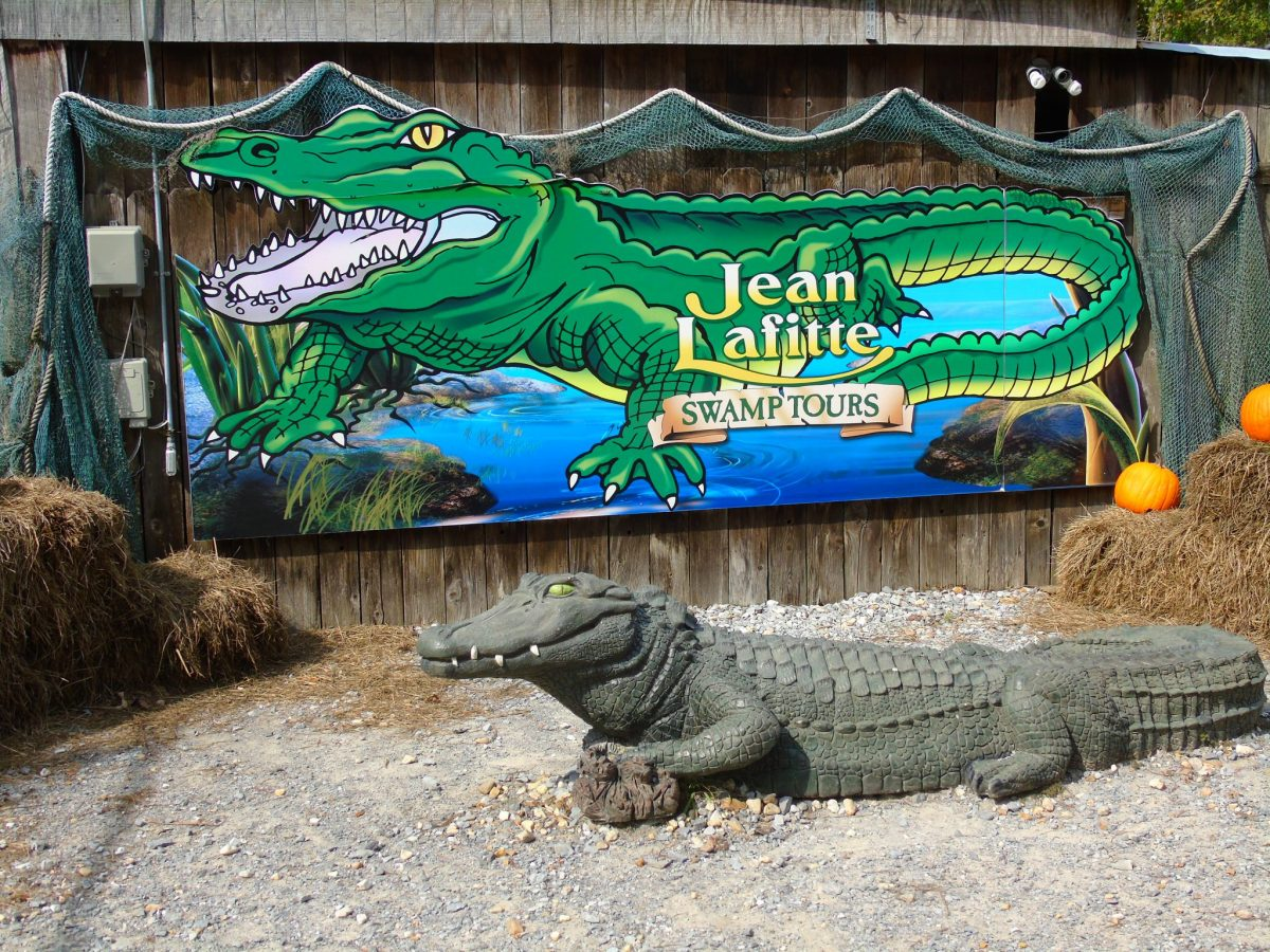 New Orleans Airboat Swamp Tour Video